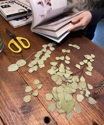 시간이 흘러 잘 마른 나뭇잎들, 고단함은 날아가고 언젠가 좋은 기억으로 남기를./사진=남형도 기자