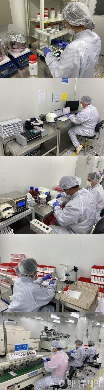 필로시스의 검체채취키트 생산 과정. UTM은 (사진 위부터)시약생산→시약검사→분주→제품 검사→포장 단계를 거친다.