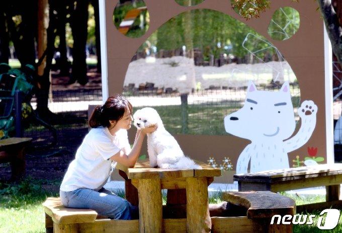 남이섬 투개더파크 © 뉴스1