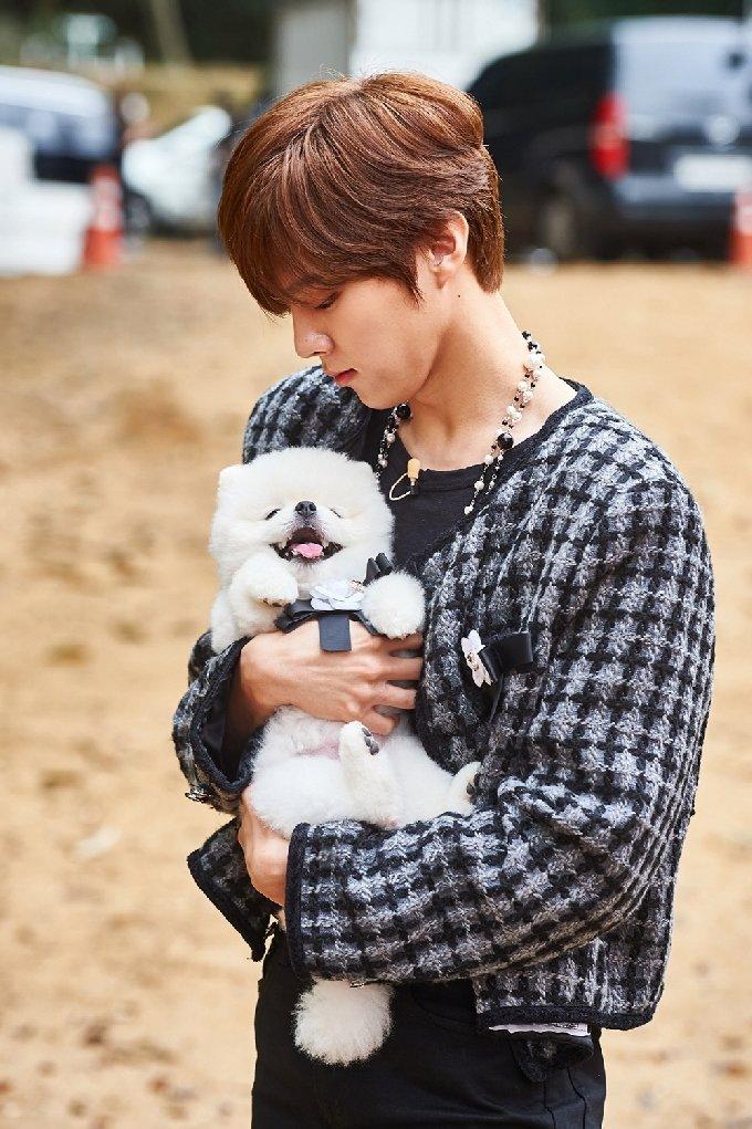 '아이돌 멍멍 선수권대회'/사진제공=MBC © 뉴스1