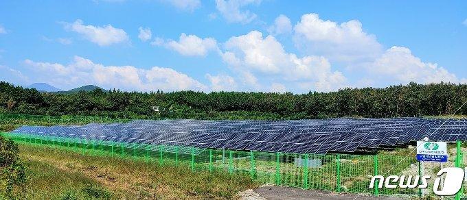 제주도 남원읍 서성로 인근에 가동중인 999㎾급 태양광발전설비. 한국태양광협회는 1㎿ 규모의 태양광발전설비를 설치하는데 필요한 땅이 평균 1만3200㎡로 분석하고 있다. © 뉴스1