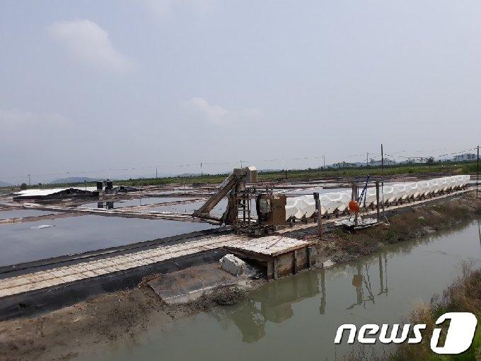 회원 950여명의 대한염업조합이 이사장 선출을 놓고 갈등을 겪고 있다. 사진은 전남 신안 염전 모습. /뉴스1