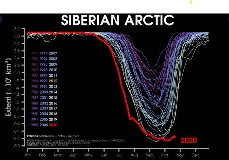 올해 해빙 범위가 급감한 후 직선으로 유지되는 것을 알 수 있다.(빨간 선)/사진제공=미국 국립빙설자료센터 트위터 캡쳐