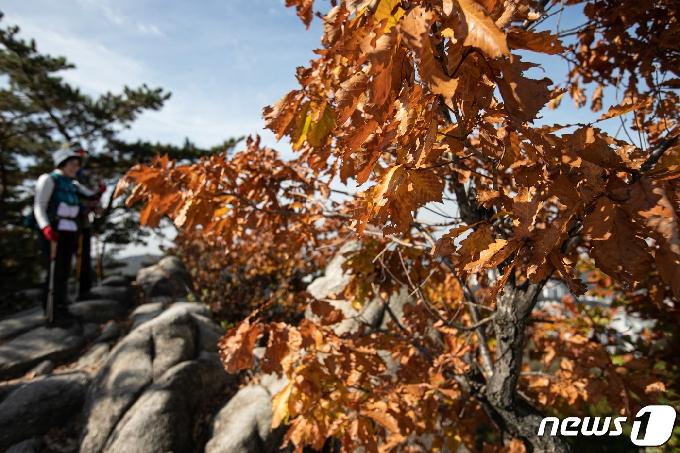 [사진] 가을옷 갈아입는 산 찾은 시민들