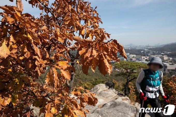 [사진] 단풍철 등산 즐기는 시민들