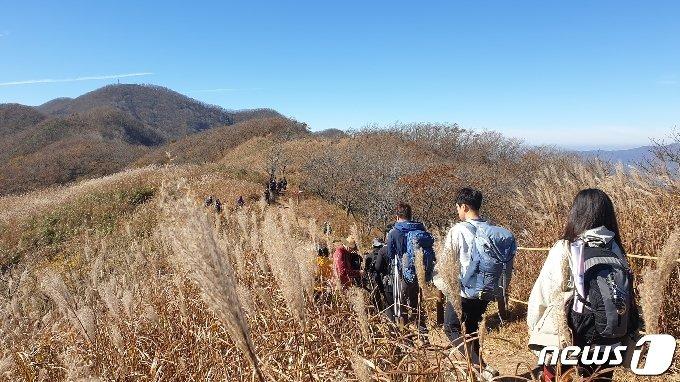 25일 전북 장수군 장안산에서 등산객들이 가을을 즐기고 있다. 2020.10.25/뉴스1 © News1 이지선 기자
