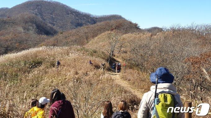 25일 전북 장수군 장안산을 찾은 등산객들이 가을을 만끽하고 있다.2020.10.25/뉴스1 © News1 이지선 기자
