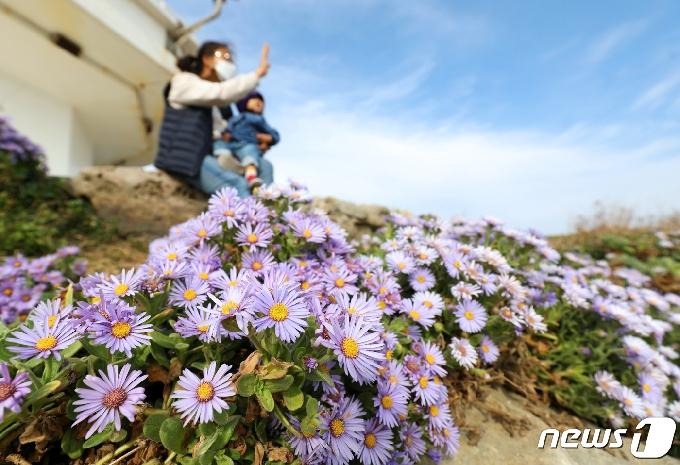 [오늘의 날씨] 울산(30일, 금)…일교차 15도 '건강 주의'