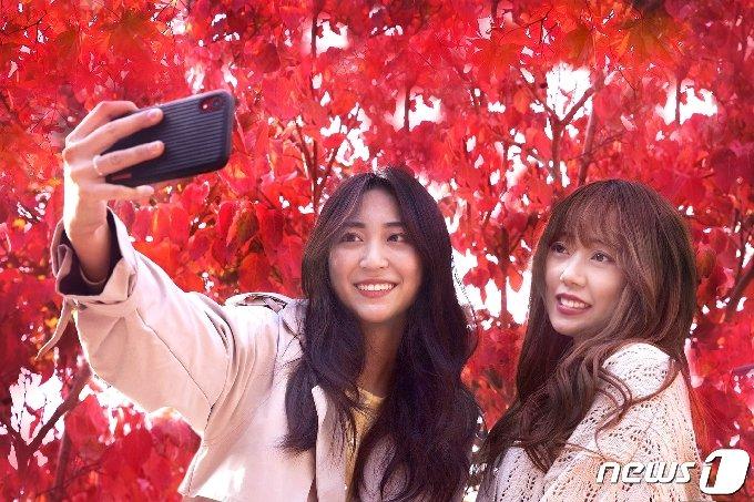 경북 칠곡군의 청년예비창업가 육성사업을 �해 창업해 성공한 이온유씨(26·여·왼쪽)와 장윤아씨(21·여)가 단풍이 절정인 나무를 배경으로 사진을 찍고 있다. 이들이 창업한 애견샵은 코로나19에도 매출이 늘었다. (칠곡군 제공) 2020.11.1/© 뉴스1