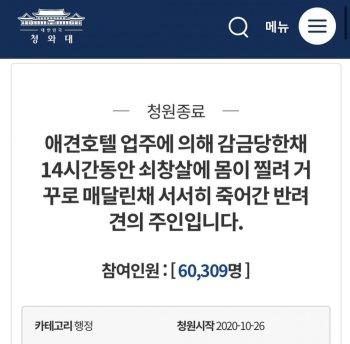 12시간 쇠창살 찔려 죽은 곰순이…경찰은 동물학대 '무혐의'