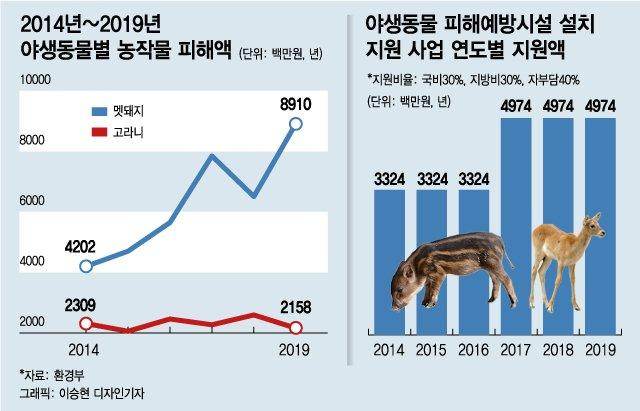 '라쿤카페' 사라지고 동물원 '허가제'로 바뀐다