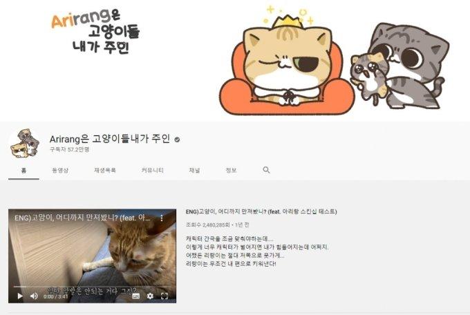 /사진='Arirang(아리랑)은 고양이들 내가 주인' 유튜브 채널