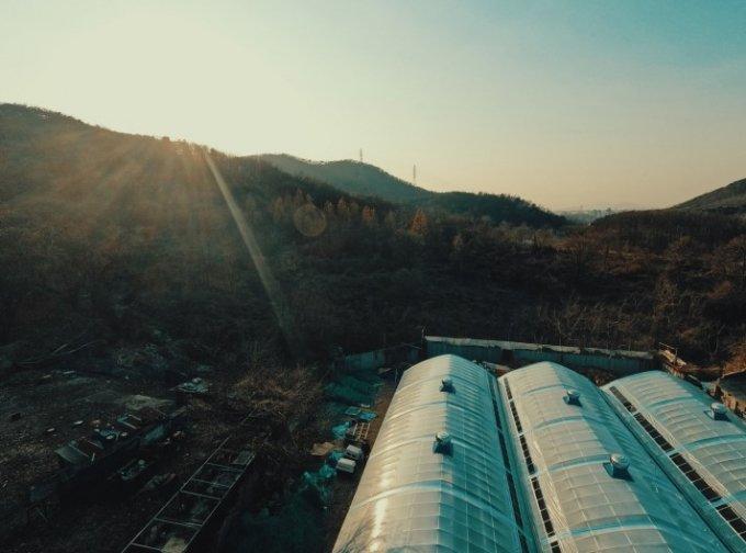 영하 15도의 맹추위가 찾아오기 전, 계양산 시민 보호소엔 비닐하우스가 생겼다. 다 독자들 마음 덕분이다./사진=인스타그램 랜드하운드(@land_hound_korea)