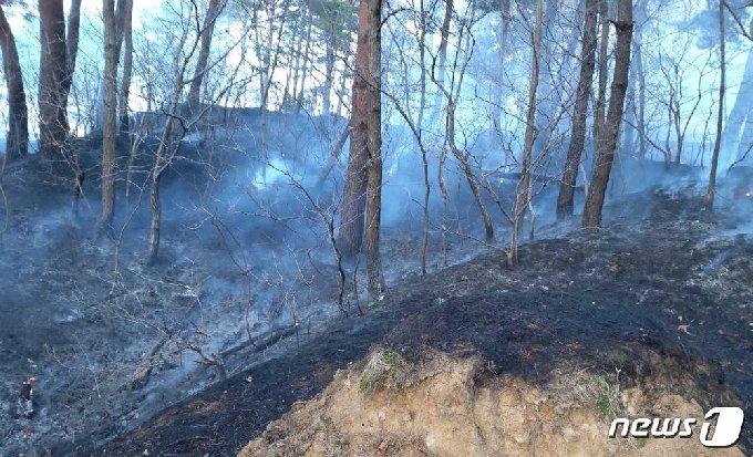 17일 오후 3시58분쯤 강원 동해 부곡동의 한 야산에서 산불이 발생했다. (강원도소방본부 제공) © 뉴스1