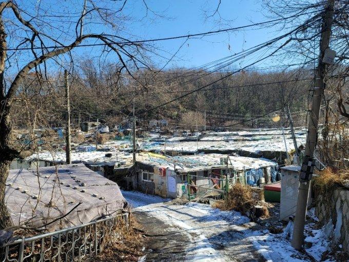19일 오전 서울 강남구 개포동 구룡마을 판자촌 전경. 사진 = 이사민 기자