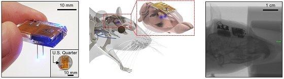 개발된 뇌 이식용 무선 디바이스. (좌) 무선 디바이스의 사진. LED 탐침이 쥐의 뇌에 삽입된 상태에서, 쥐의 두피 안에 완전히 이식된 디바이스의 개념도 (중) 및 X-ray 사진 (우)/사진=KAIST