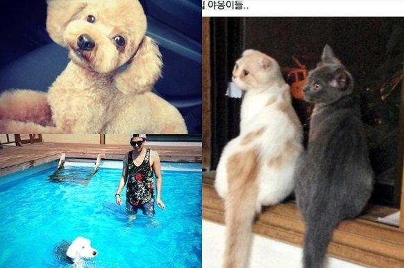 /사진=박은석 반려동물 트위터 계정