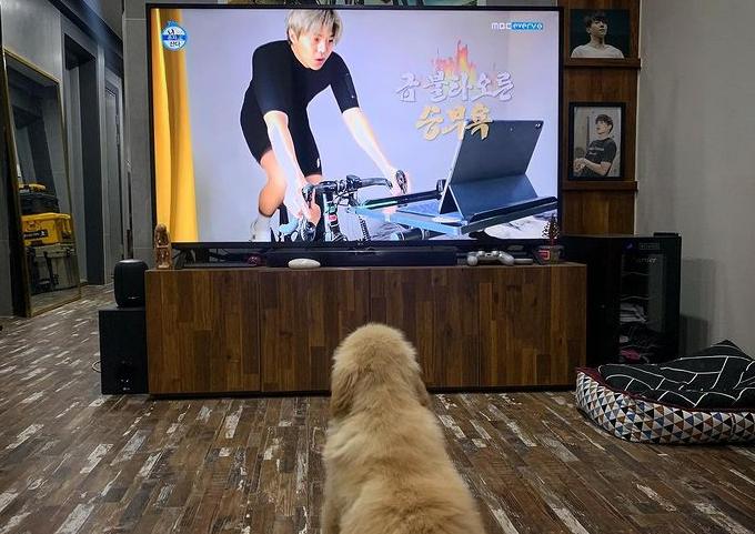 /사진=박은석 인스타그램