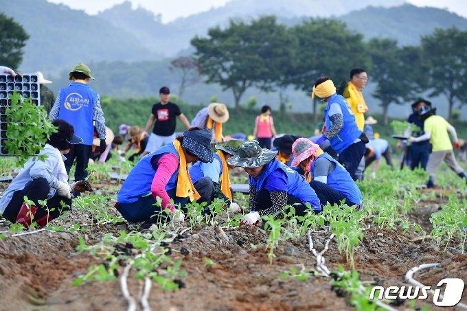 전남 장성군이 올해 한층 강화된 귀농?귀촌인 정착지원사업을 추진한다고 13일 밝혔다. © News1 박영래 기자