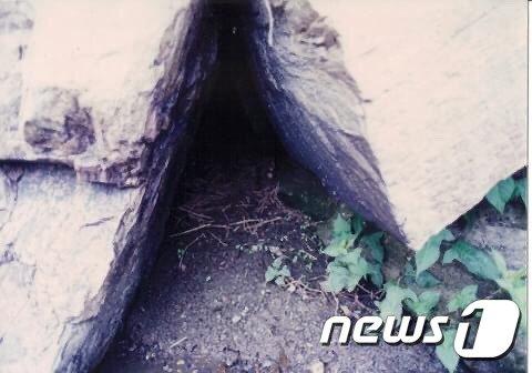 박일선 충북환경연대 대표가 촬영한 충북 충주 달천의 수달 서식지 모습.(박일선 대표 제공)2021.2.12/© 뉴스1