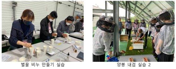 2019~2020년 양봉 전문가 교육 사진./사진제공=서울시