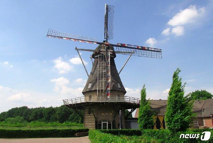 네덜란드 남부 브라반트의 작은 도시 우얼르(Oerle)에 위치한 신트 얀( Sint Jan) 풍차의 모습. 코로나 봉쇄 이전에는 동네 주민들에게 맛난 빵과 음료를 판매하는 식당으로도 인기가 높았다. © 차현정 통신원