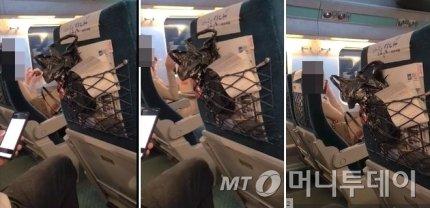 KTX 객실 내에서 음식물을 섭취하고 있는 한 승객/사진=온라인 커뮤니티 영상 캡처