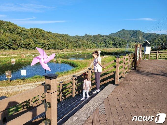 충북 옥천의 서화천 생태습지.© 뉴스1