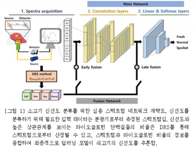 소고기 신선도 분류를 위한 심층 스펙트럼 네트워크 개략도. /자료=GIST