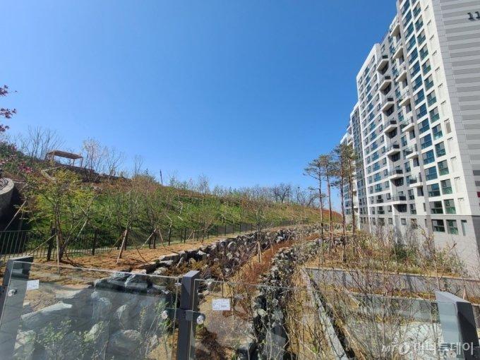 상도역 롯데캐슬 단지 뒤로 이어진 산책로/사진=김민우 기자