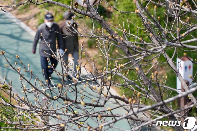 [사진] 완연한 봄