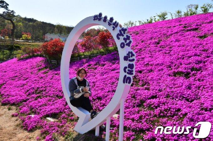 전북 순창 쉴랜드 건강장수연구소 입구 4만600㎡ 면적에 식재된 꽃잔디가 만개했다. 한 관광객이 포토존에서 사진을 찍고 있다.(순창군 제공)2021.4.13/ © 뉴스1