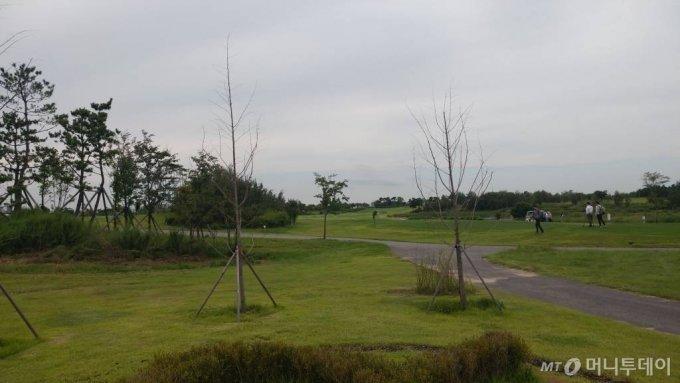 수도권매립지 제1매립장에는 매립이 종료된 이후 드림파크 골프장이 세워졌다. /사진=머니투데이