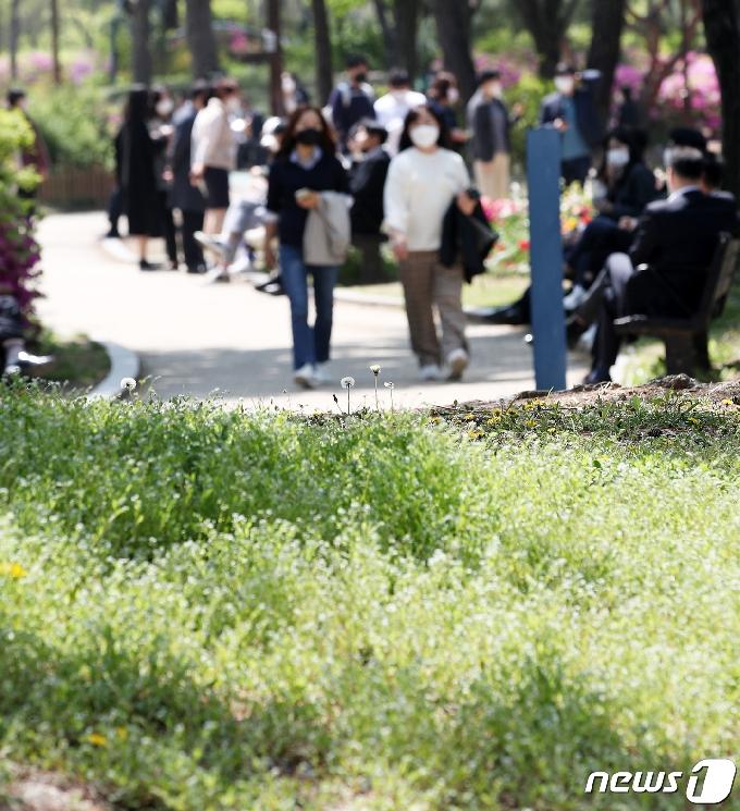 [사진] 봄 다운 봄