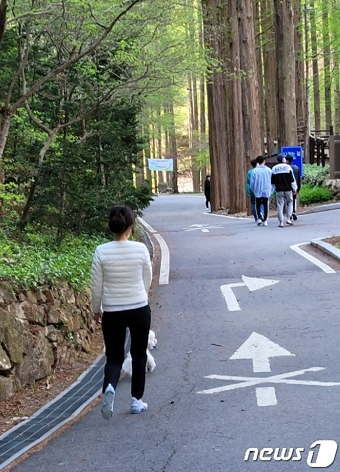'미세먼지도 못 막아'…대전 산·유원지에 봄 즐기는 나들이객