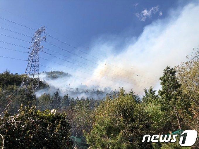 17일 오후 3시22분쯤 전남 여수시 봉계동 봉계1저수지 인근 산에서 화재가 발생, 산림당국과 소방당국이 진화작업을 벌이고 있다.(독자 제공) 2021.4.17/뉴스1 © News1 전원 기자