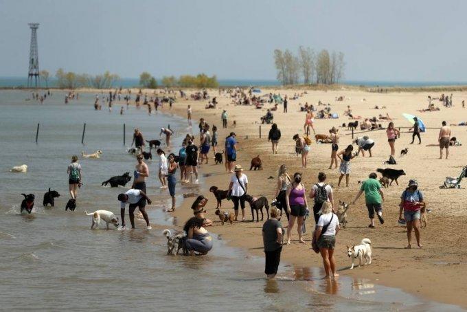 [시카고=AP/뉴시스]27일(현지시간) 미 일리노이주 시카고의 몬트로즈 도그비치에서 마스크를 쓰거나 쓰지 않은 사람들이 개와 함께 모여 있다. 미국 질병통제예방센터(CDC)는 코로나19 백신 접종을 완료한 경우 야외에서 마스크를 쓰지 않아도 된다고 발표하며 야외 마스크 착용에 대한 지침을 완화했다. 2021.04.28.