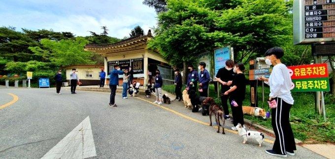 지난달 24일 한국관광공사 전북지사에서 진행한 반려동물 동반 캠핑에서 산책을 통한 행동교정 프로그램에 참여한 여행객과 반려견의 모습. /사진=한국관광공사