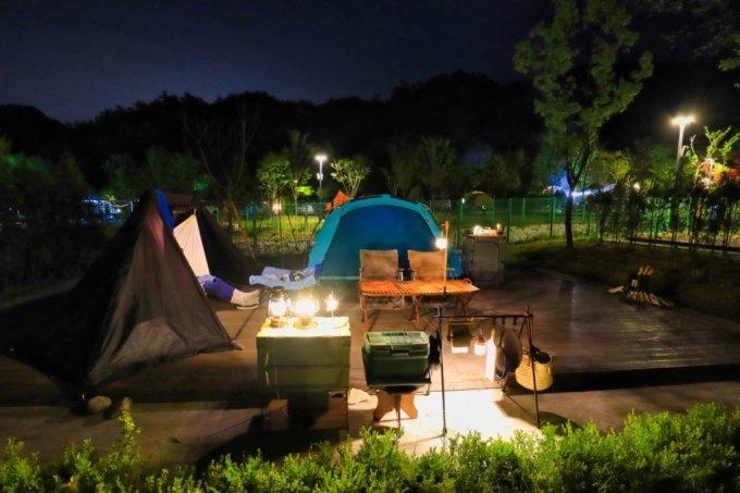지난달 24일 한국관광공사 전북지사에서 진행한 반려동물 동반 캠핑. /사진=한국관광공사