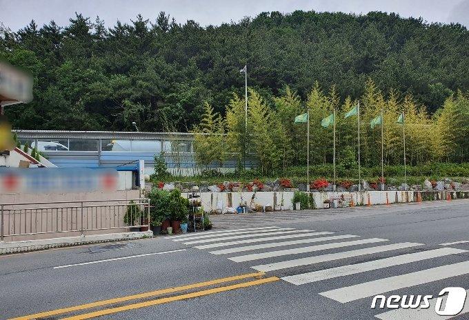 부산 북구 덕성초의 일부 등교 구역에 신호등이 설치되어 있지 않다.2021.5.17/© 뉴스1 노경민 기자
