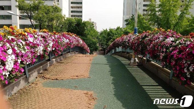 달안동육교 꽃장식. © 뉴스1