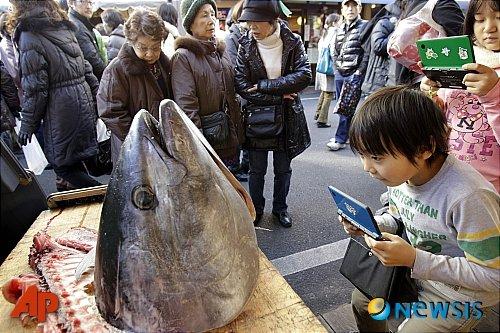일본 도쿄의 한 생선시장에 나온 참치 머리. /사진=도쿄(일본)=AP/뉴시스