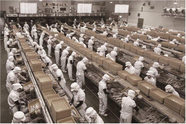 동원산업의 참치캔 대량생산체제. /사진=동원산업
