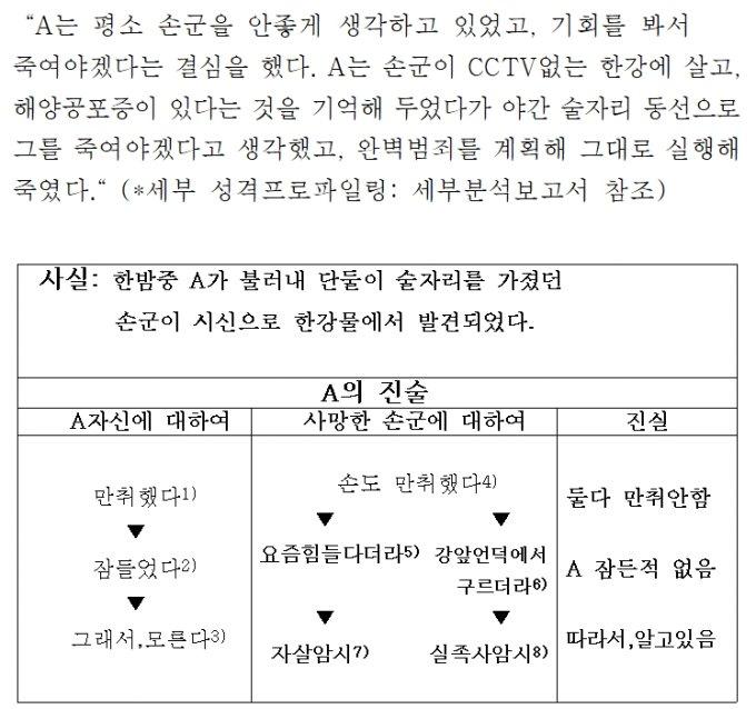 인터넷 상에 퍼진 '한강사건 보고서' 일부. 글쓴이는 A씨가 계획적으로 정민씨를 살해했다고 주장했다/사진=해당 보고서 캡쳐