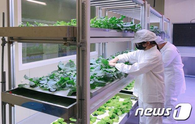 울산산업고, 스마트 실습장 구축 지원 사업 선정.(울산교육청 제공)© 뉴스1