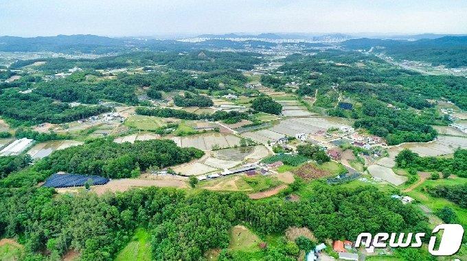 송선?동현 신도시 개발지역© 뉴스1
