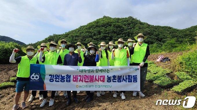 강원농협, 대학생과 함께하는 농촌일손돕기 실시(농협 강원지역본부 제공) 2021.6.22/뉴스1
