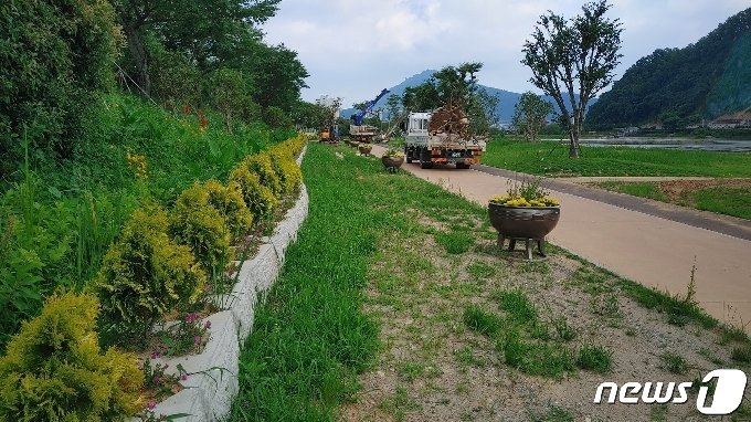 장흥군이 탐진강변에 나무를 식재하는 정비공사를 실시하고 있다.2021.6.23/뉴스1
