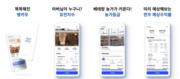 뱅카우 어플리케이션. /사진=뱅카우 제공