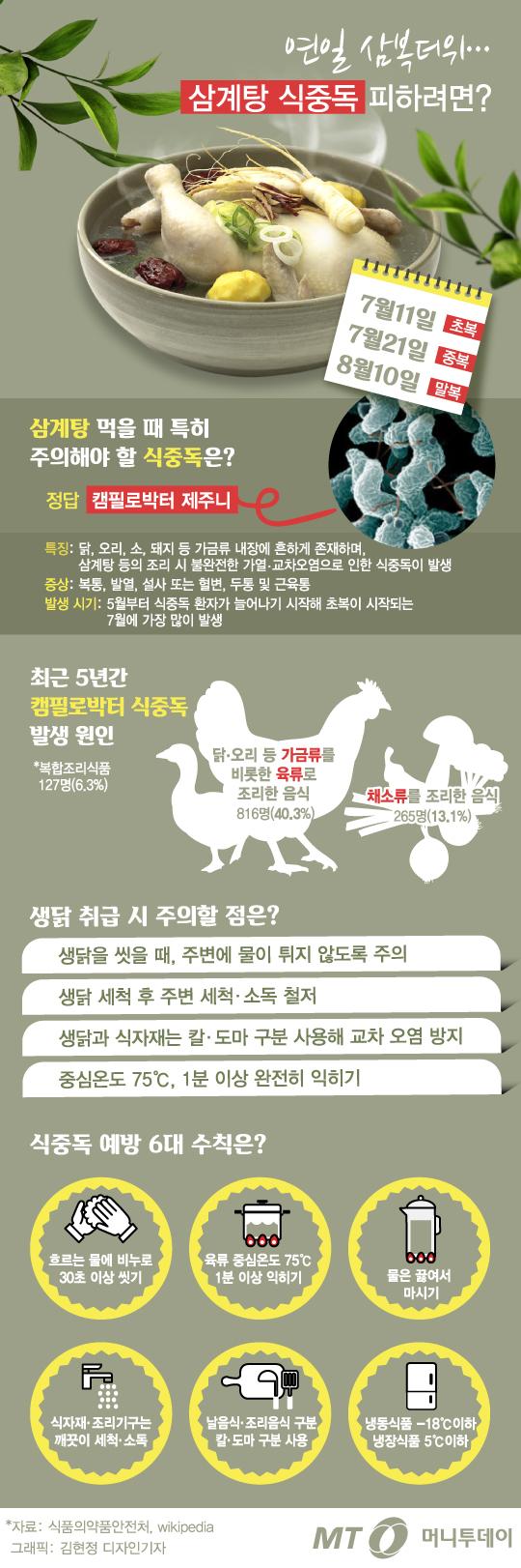 [그래픽뉴스] 연일 삼복더위... 삼계탕 식중독 예방하려면?